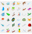summer miami icons set isometric style vector image vector image