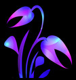 tulip in purple and blue glare for the postcard vector image