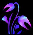 Tulip in purple and blue glare for the postcard
