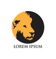 yellow head lion logo vector image vector image