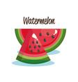 watermelon fruit fresh icon vector image