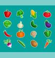 vegetable icon designs vector image