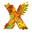 autumn stylized alphabet with foliage letter x vector image vector image