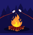 bonfire and marshmallow friends in night camping vector image