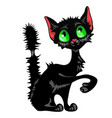 funny sly black cat with green eyes and mangy tail vector image