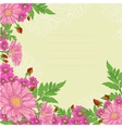 Background with mix of flowers vector image vector image