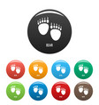 bear step icons set color vector image vector image