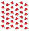 delicious watermelon cartoon vector image