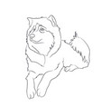dog lies lines vector image