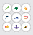 flat icon sea set of cachalot playful fish vector image vector image
