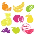 Fruit Collection for your Design vector image