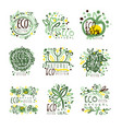 organic bio farm fresh eco healthy food set vector image vector image