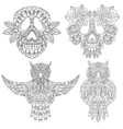 Owl and skull sketchs vector image vector image