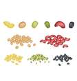 Set of Different Beans on White Background vector image vector image