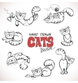 sketch playful cats vector image