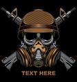 skull army military logo vector image