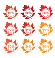 label sale with autumn leaves vector image