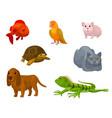 cartoon set with various pets vector image