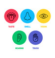 icon set five human senses vector image
