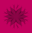 Pink purple Wheel Flower vector image
