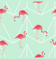 seamless pattern with pink flamingo exotic bird vector image vector image