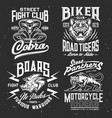 tiger cobra panther boar t-shirt print mockup vector image vector image