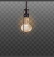 lit light bulb ceiling lamp with switch rope vector image