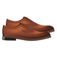 men classic leather shoes pair in brown color side vector image vector image