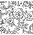 roses hand drawing seamless background vector image vector image