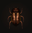 steampunk style mechanical beetle vector image vector image