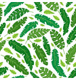 tropical leaves pattern summer equatorial vector image vector image
