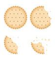 bitten chip biscuit cookie cracker set vector image