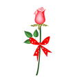 A Lovely Red Rose with Red Ribbon vector image vector image