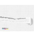 blank banner with scrolled torn piece with paper vector image vector image