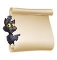 halloween cat scroll vector image vector image