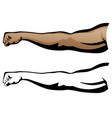 muscular arm extended fist punch vector image