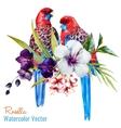 Nice birds vector image
