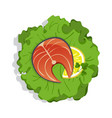 salmon steak on salad isolated icon vector image vector image