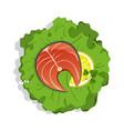 salmon steak on salad isolated icon vector image