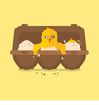 Single New Born Chick Hit The Egg vector image vector image