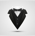 the collar of the jacket on a white background vector image vector image