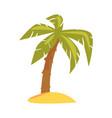 green tropical palm cartoon vector image