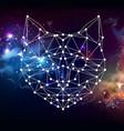 abstract polygonal tirangle animal cat vector image