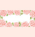 background or card with pink roses vector image vector image