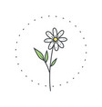 chamomile flower logo for spa and beauty salon vector image vector image