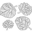 coloring book page with leaves vector image vector image