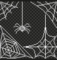 pixel spider web frame detailed isolated vector image vector image