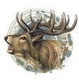 deer realistic artistic color portrait vector image vector image