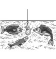 fishing process sketch vector image