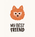 head of cute pomeranian dog in glasses and my best vector image vector image